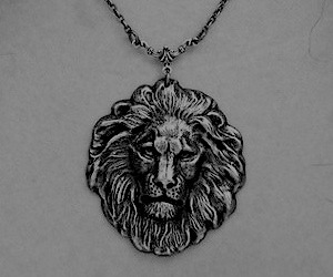 lion, lioness, and necklas image