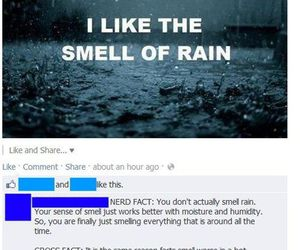 funny and rain image