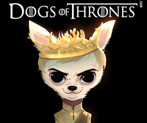 dog, Queen, and got image