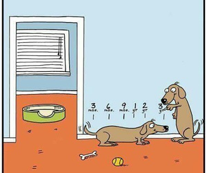 comic, dachshund, and dogs image