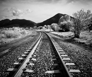 black and white, landscape, and track image