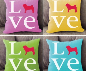 animals, college, and cushion image