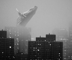 city and whale image