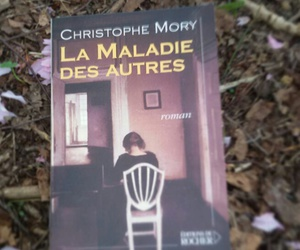french, book, and la maladie des autres image