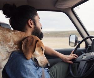 dog, boy, and man image