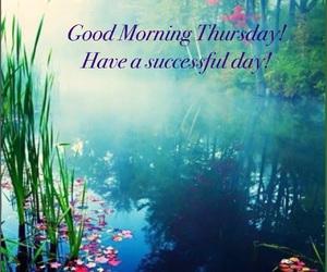 beautiful nature, good day, and good morning image