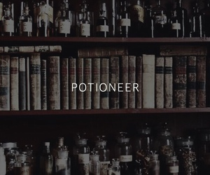 harry potter, hp, and potioneer image