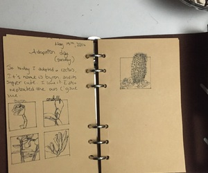 cacti, cactus, and journal image