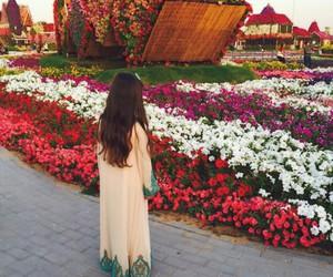 Algeria, art, and beauty image