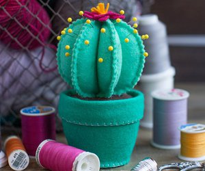 cactus, diy, and idea image