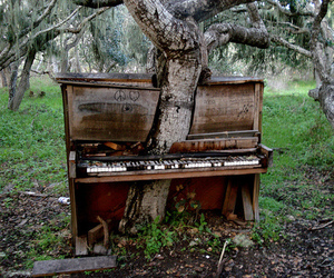 piano, tree, and nature image