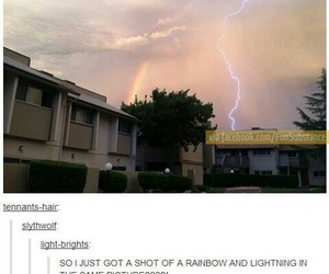 thor, funny, and rainbow image