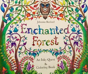 enchanted forest, johanna basford, and adult coloring image