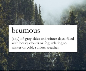 sky, words, and brumous image