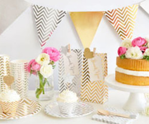 party invitation, party themes, and party supplies image