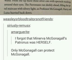 badass, cool, and mcgonagall image