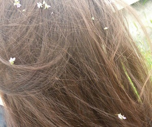brown hair, flower, and hair image
