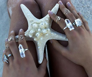 beach, accessories, and starfish image