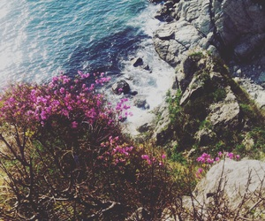 Best, flowers, and sea image
