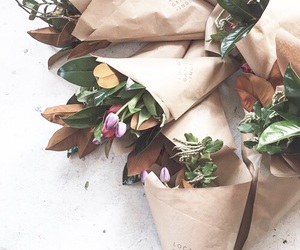 flowers and plants image