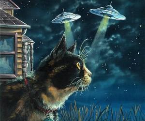cat and alien image