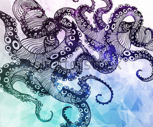colors, marine, and octopus image