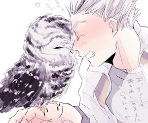 haikyuu, owl, and anime image