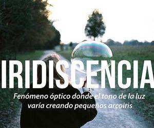palabras, iridiscencia, and words image