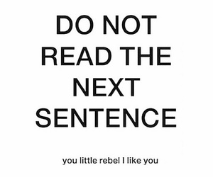 funny, qoutes, and rebel image