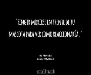 Animales, dog, and frases image