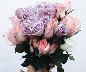 beautiful, flowers, and fleur image