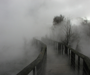 pale, bridge, and fog image