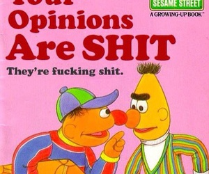 funny, opinion, and sesame street image