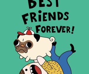 dogs, fun, and friends image