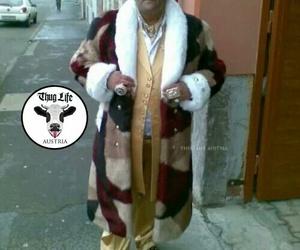 austria, funny, and thug life image