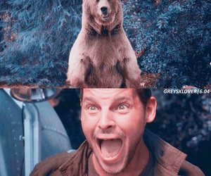 grey's anatomy, alex karev, and bear image