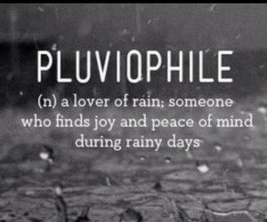 rain and pluviophile image