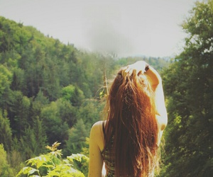 forest, free, and summer image