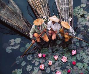 amazing, photograph, and lotus garden image
