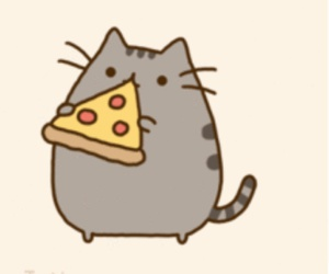 pizza and cat image