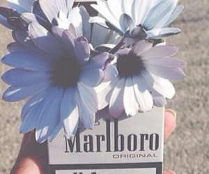 flowers, marlboro, and cigarette image