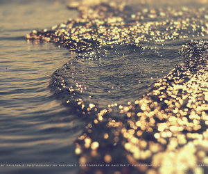 photography, sea, and summer image
