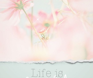 life, wallpaper, and flowers image