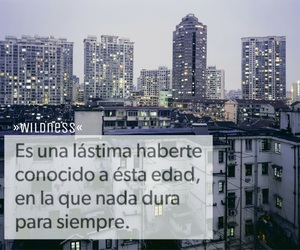 frases, tumblr, and español image