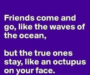 ocean and friends image