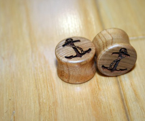 Plugs and anchor image