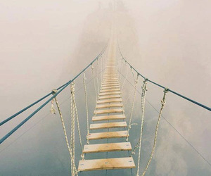 bridge, nature, and fog image