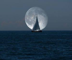 moon, sea, and ocean image