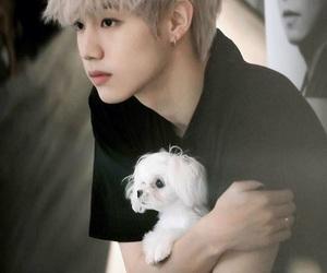 guy, kpop, and JYP image