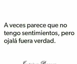 frases, quotes, and feelings image